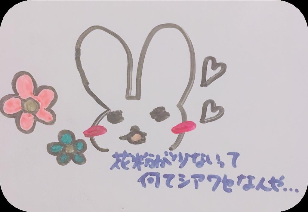 f:id:narumi087:20190217004754p:image