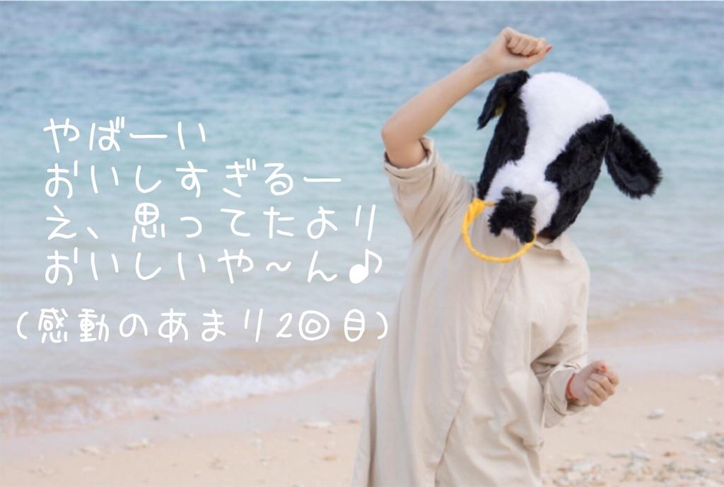 f:id:narumi087:20190226080315j:image