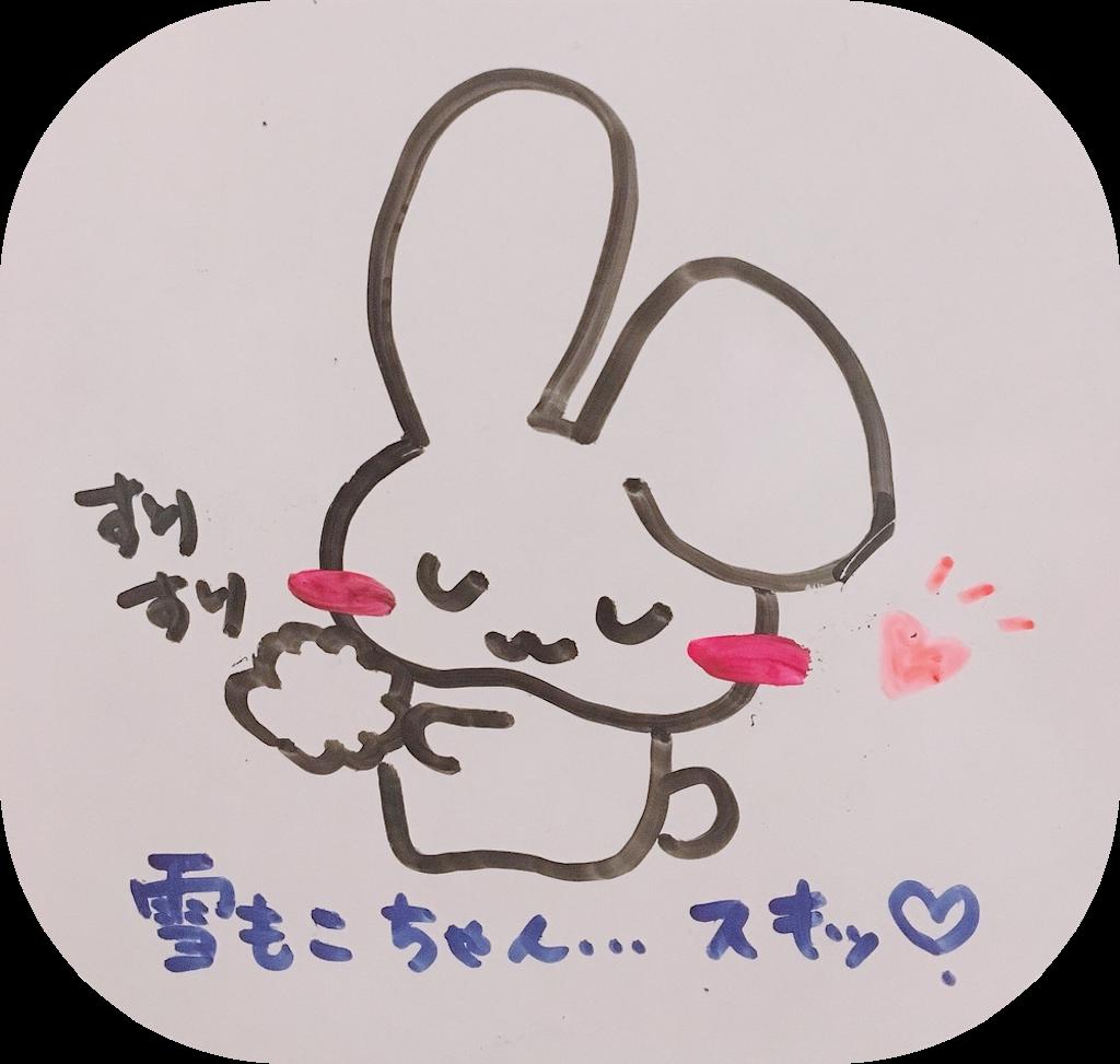 f:id:narumi087:20190228221756p:image