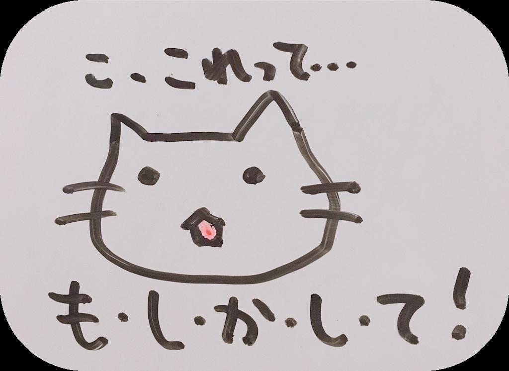 f:id:narumi087:20190312205702p:image