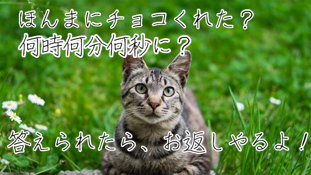 f:id:narumi087:20190314002503j:image
