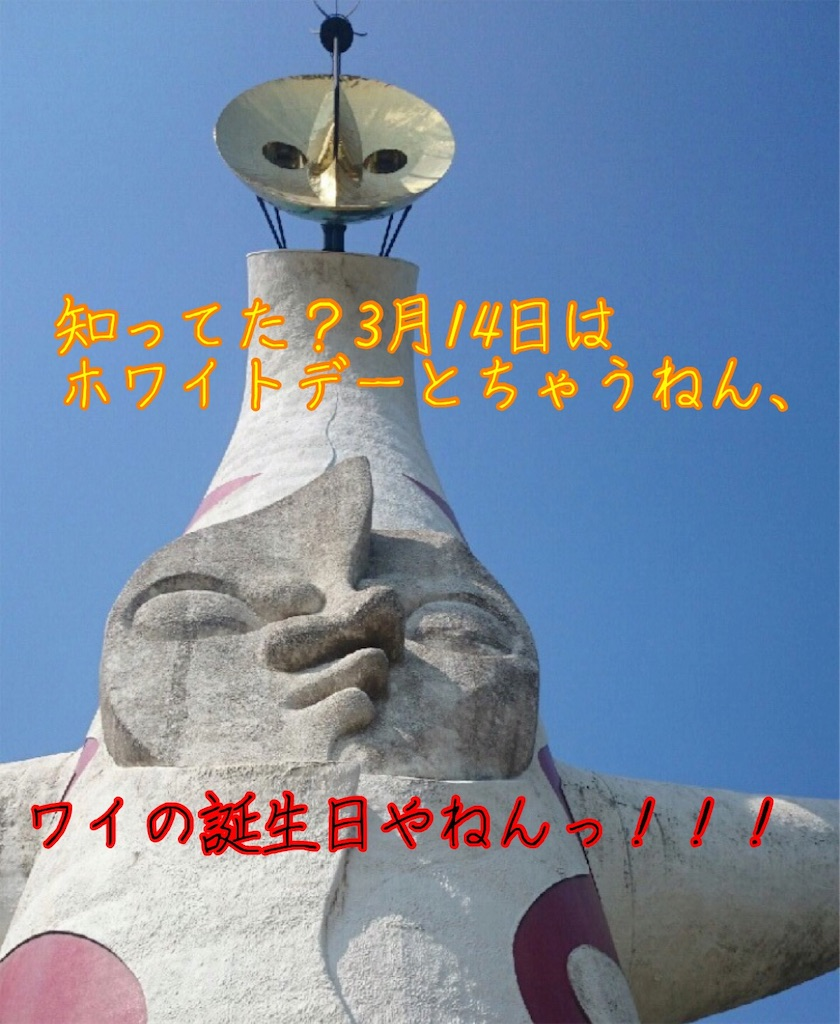 f:id:narumi087:20190314002621j:image