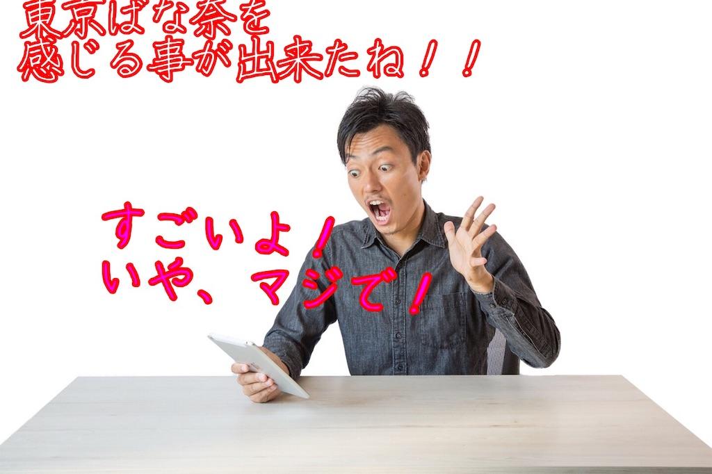 f:id:narumi087:20190314225404j:image