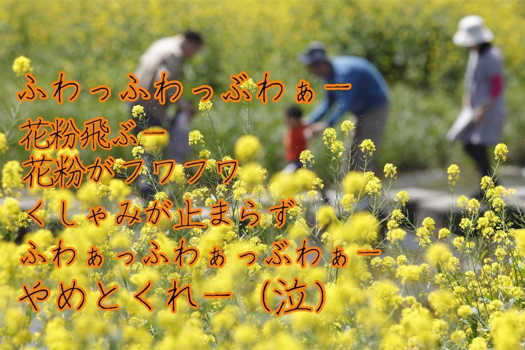 f:id:narumi087:20190319223544j:image