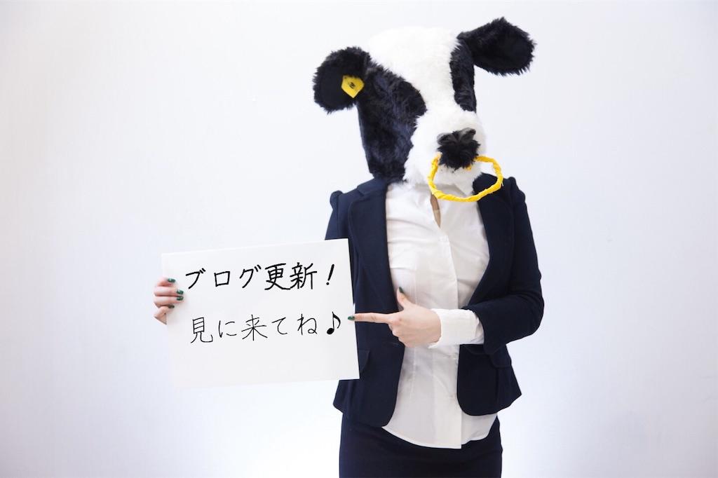 f:id:narumi087:20190321204608j:image