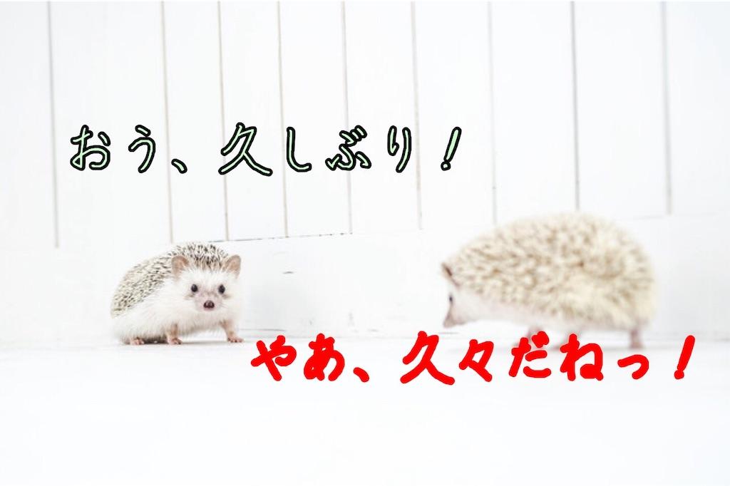 f:id:narumi087:20190507175948j:image