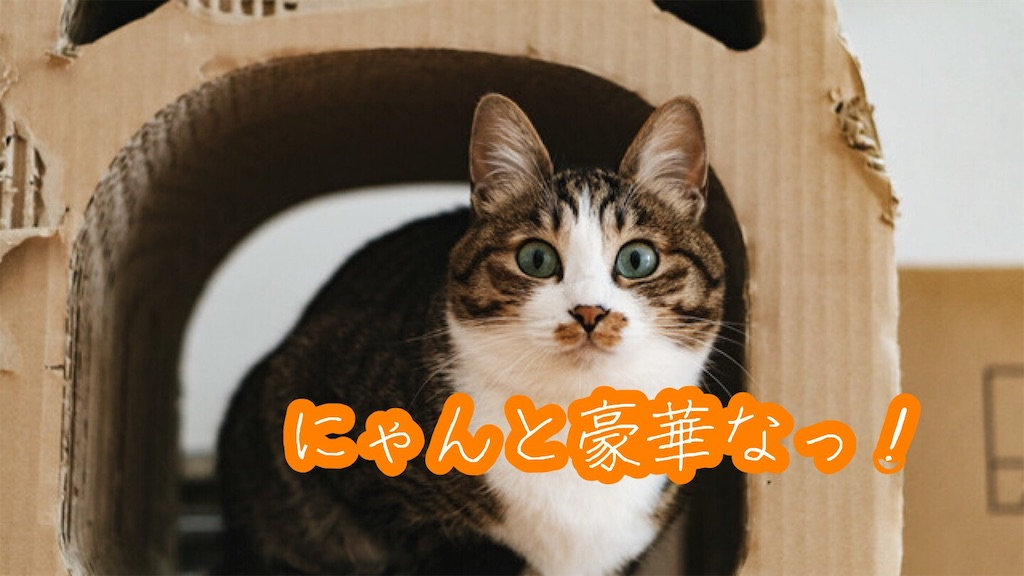f:id:narumi087:20190530112450j:image