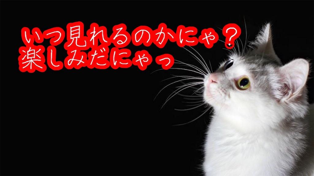 f:id:narumi087:20190604170248j:image
