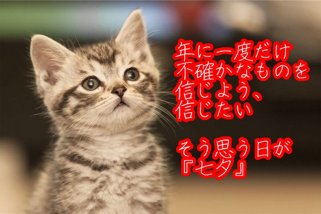 f:id:narumi087:20190707150959j:image