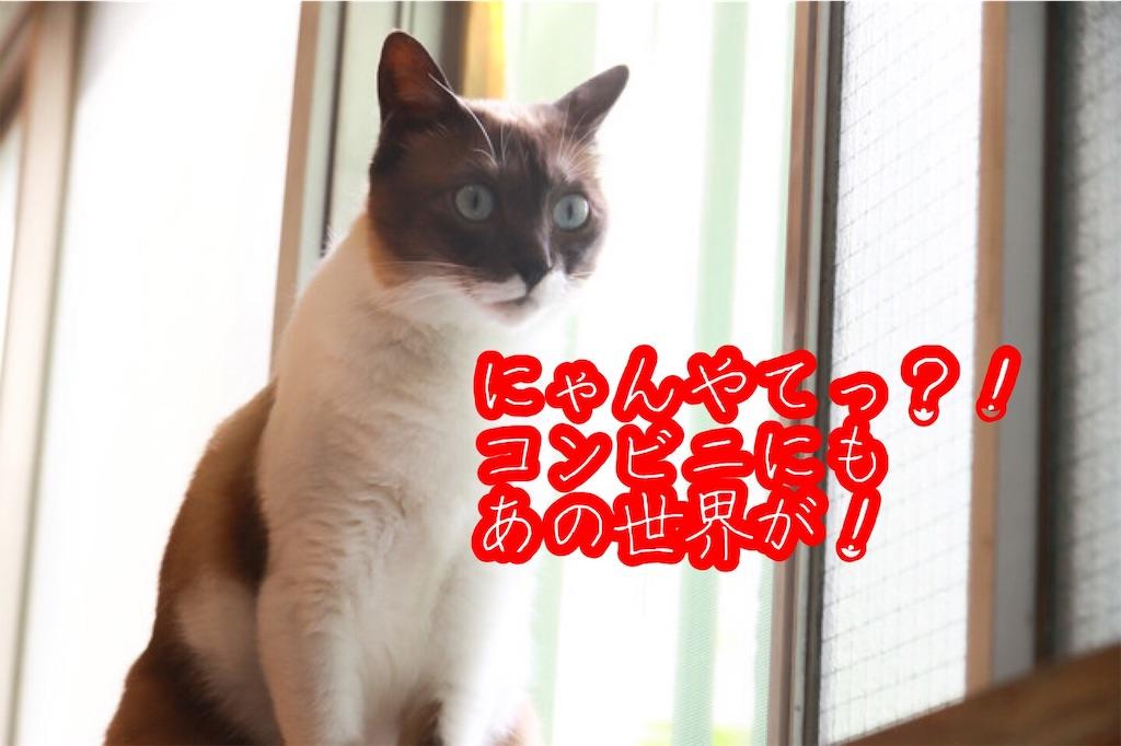 f:id:narumi087:20190710132936j:image
