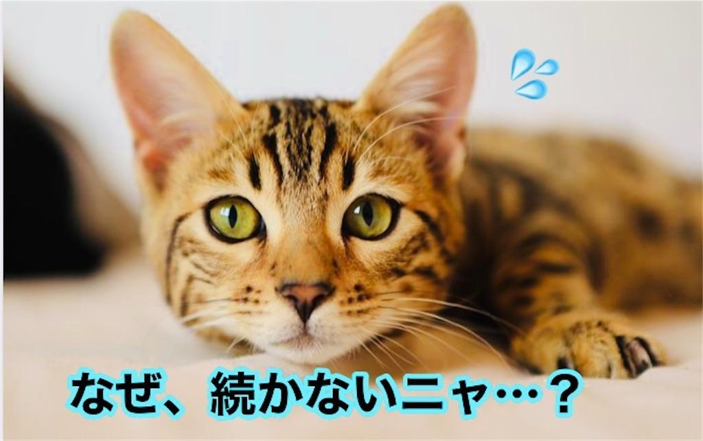f:id:narumi087:20210220170351j:image