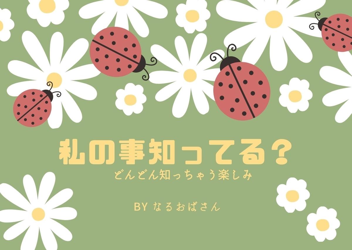 f:id:narutabi:20210512235229j:plain