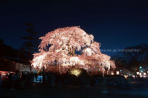 f:id:narutakiso:20090331171858j:image