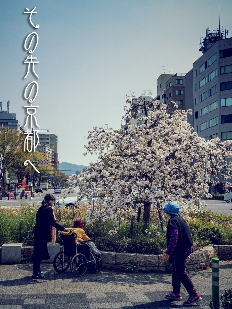 f:id:narutakiso:20190407105123j:plain