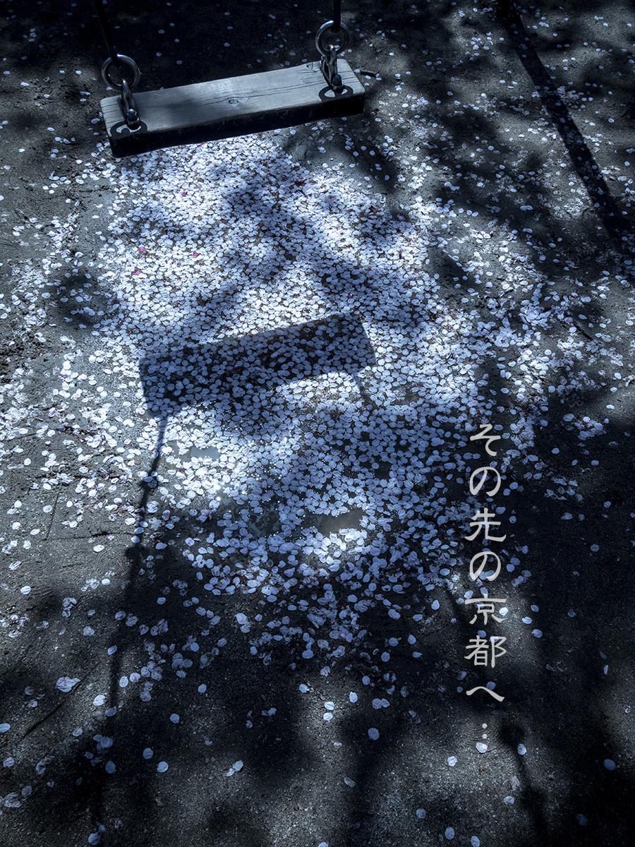 f:id:narutakiso:20190409103203j:plain