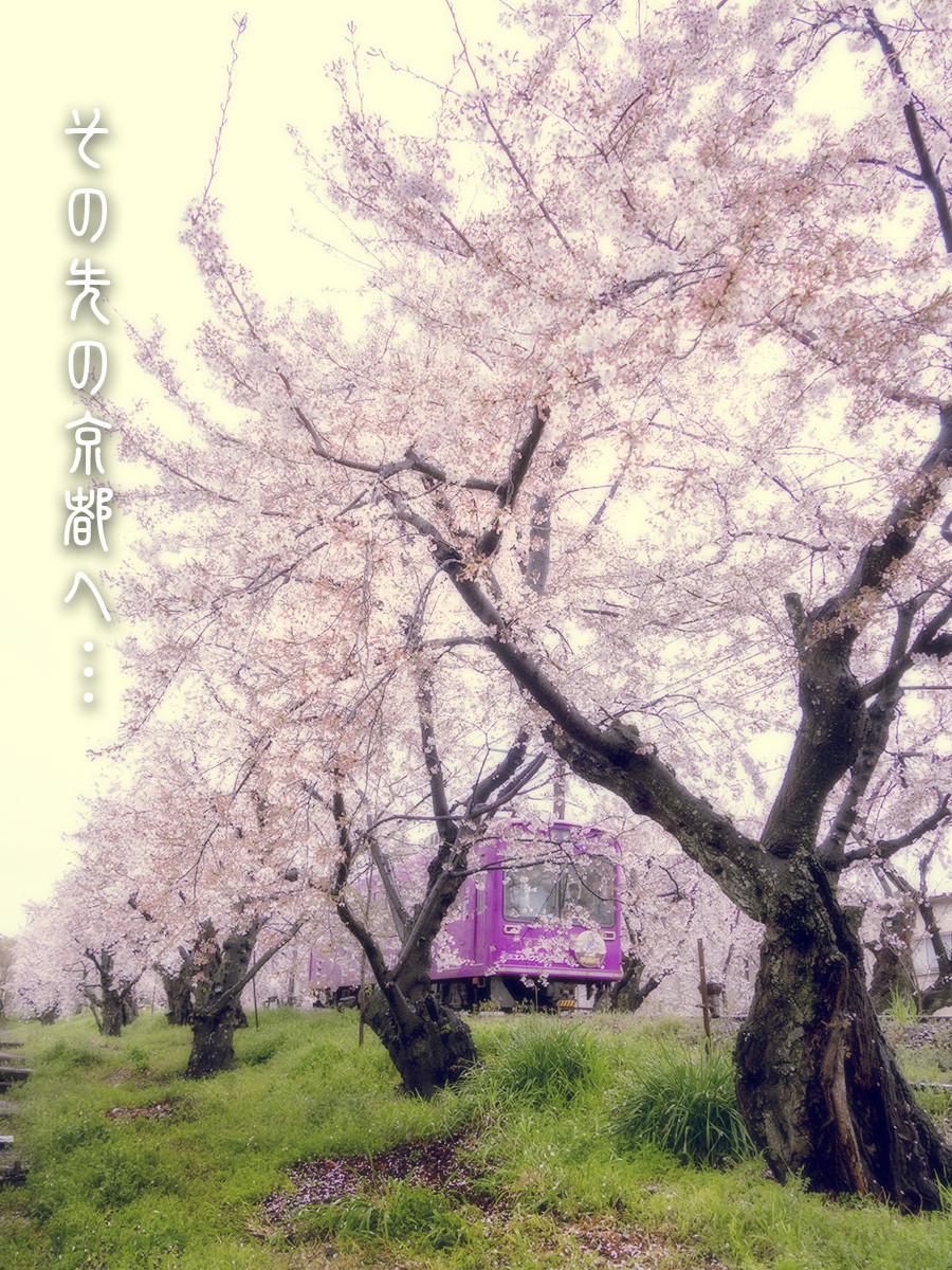 f:id:narutakiso:20190410122548j:plain