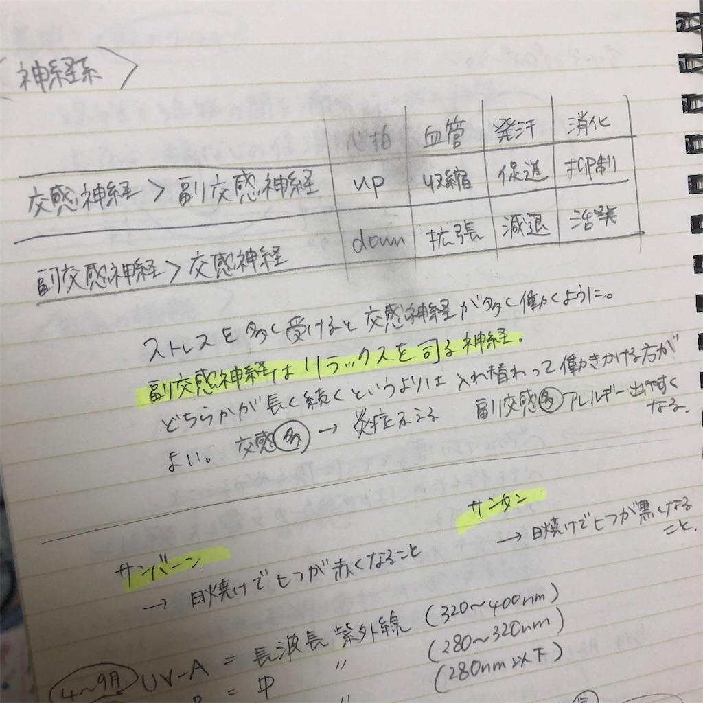f:id:nashikideomasu:20210726004105j:image