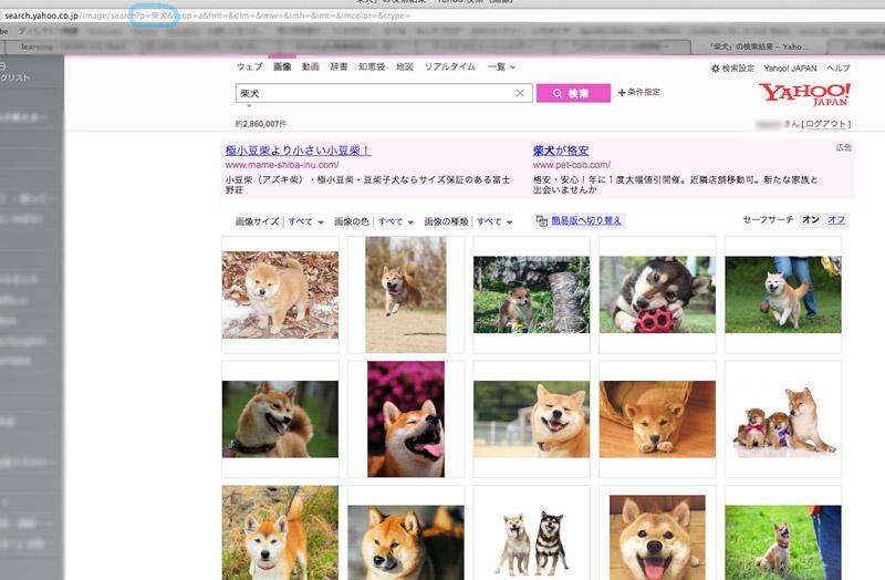 f:id:nashiko_chan:20170710014148j:plain
