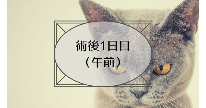 f:id:nasumiblog:20210104182513j:plain