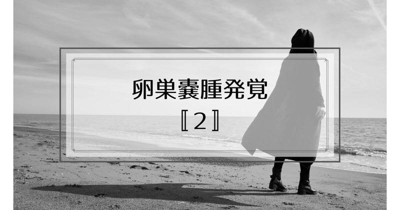 f:id:nasumiblog:20210104182739j:plain