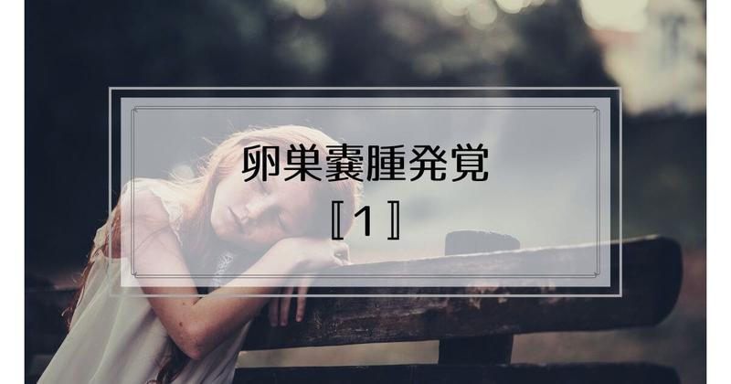 f:id:nasumiblog:20210104182744j:plain