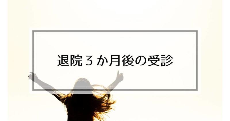 f:id:nasumiblog:20210104182857j:plain