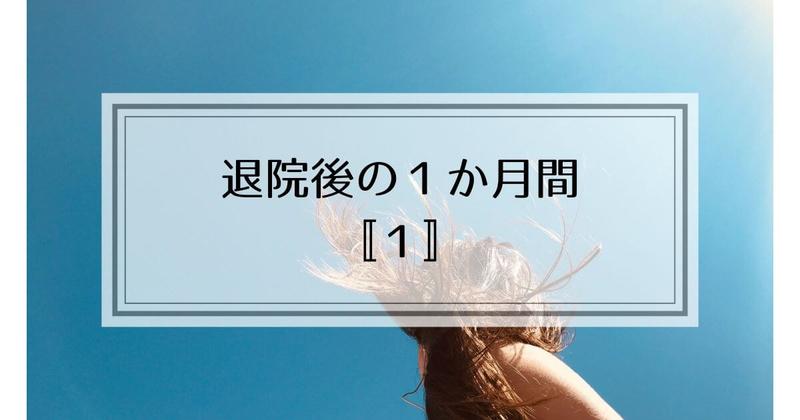 f:id:nasumiblog:20210104182914j:plain