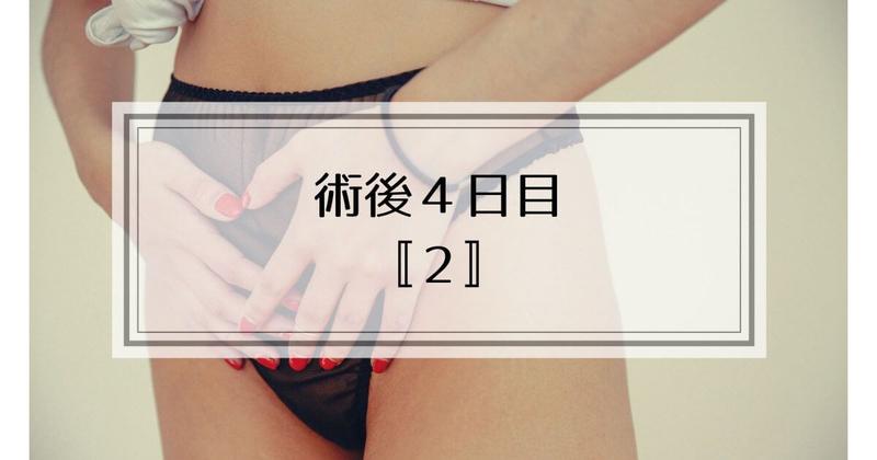 f:id:nasumiblog:20210104182954j:plain