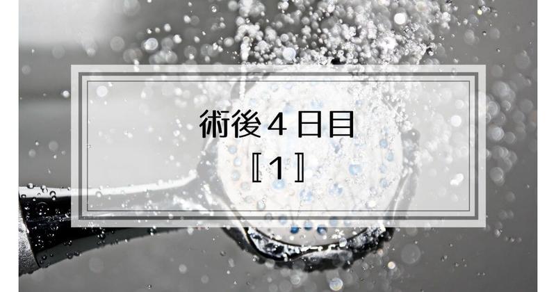 f:id:nasumiblog:20210104182958j:plain