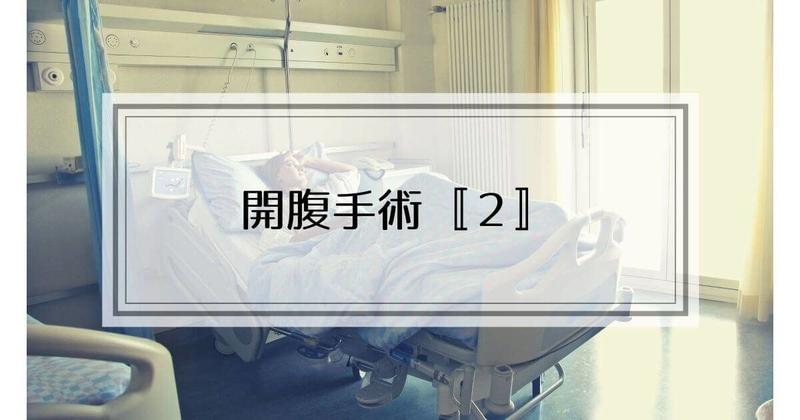 f:id:nasumiblog:20210104183021j:plain