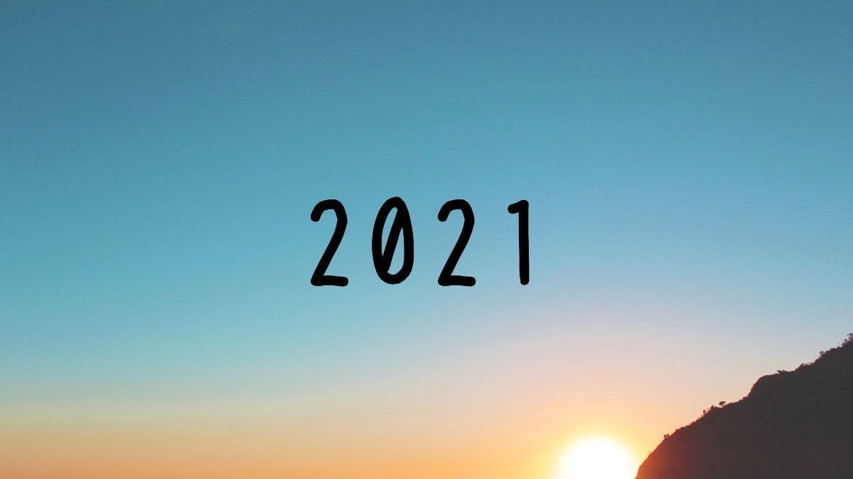 f:id:nasumiblog:20210114224359j:plain