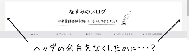 f:id:nasumiblog:20210119124907j:plain