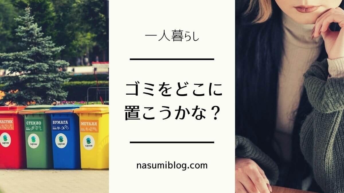 f:id:nasumiblog:20210321120132j:plain