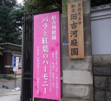 f:id:nasuno_totteoki:20121129170734j:image