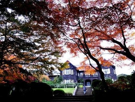 f:id:nasuno_totteoki:20121129170820j:image