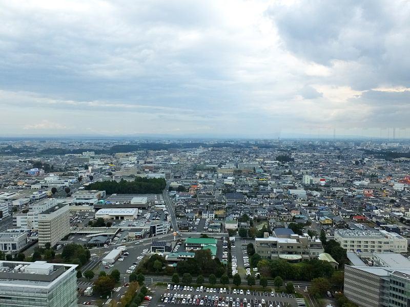 f:id:nasuno_totteoki:20181101150517j:image:w640