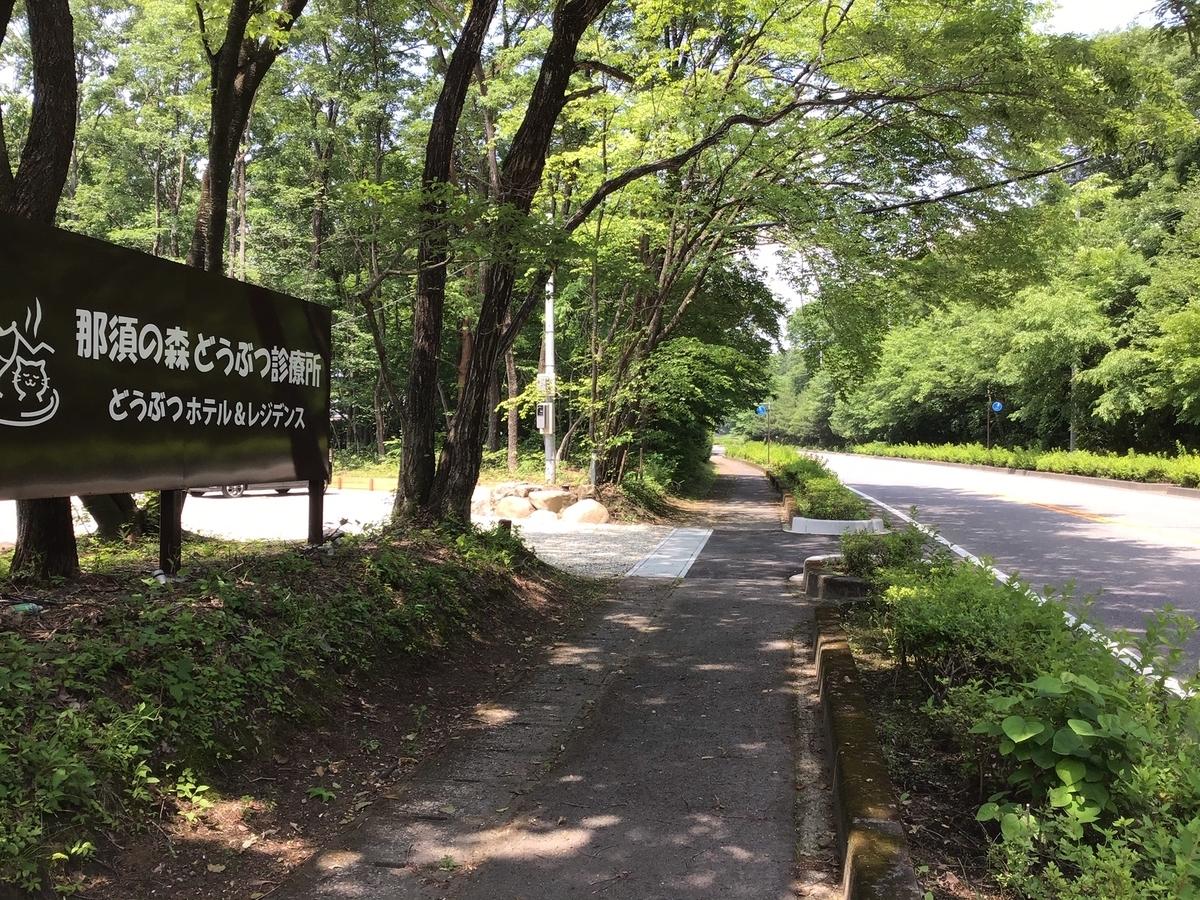 f:id:nasunomori-ah:20200710172950j:plain