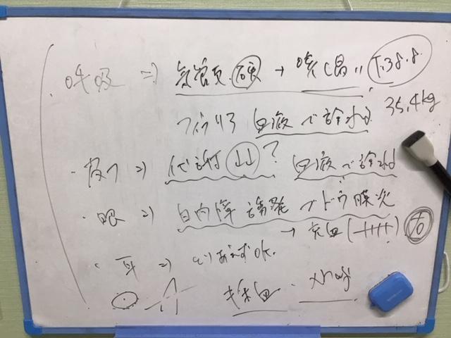 f:id:nasunomori-ah:20200901004542j:plain