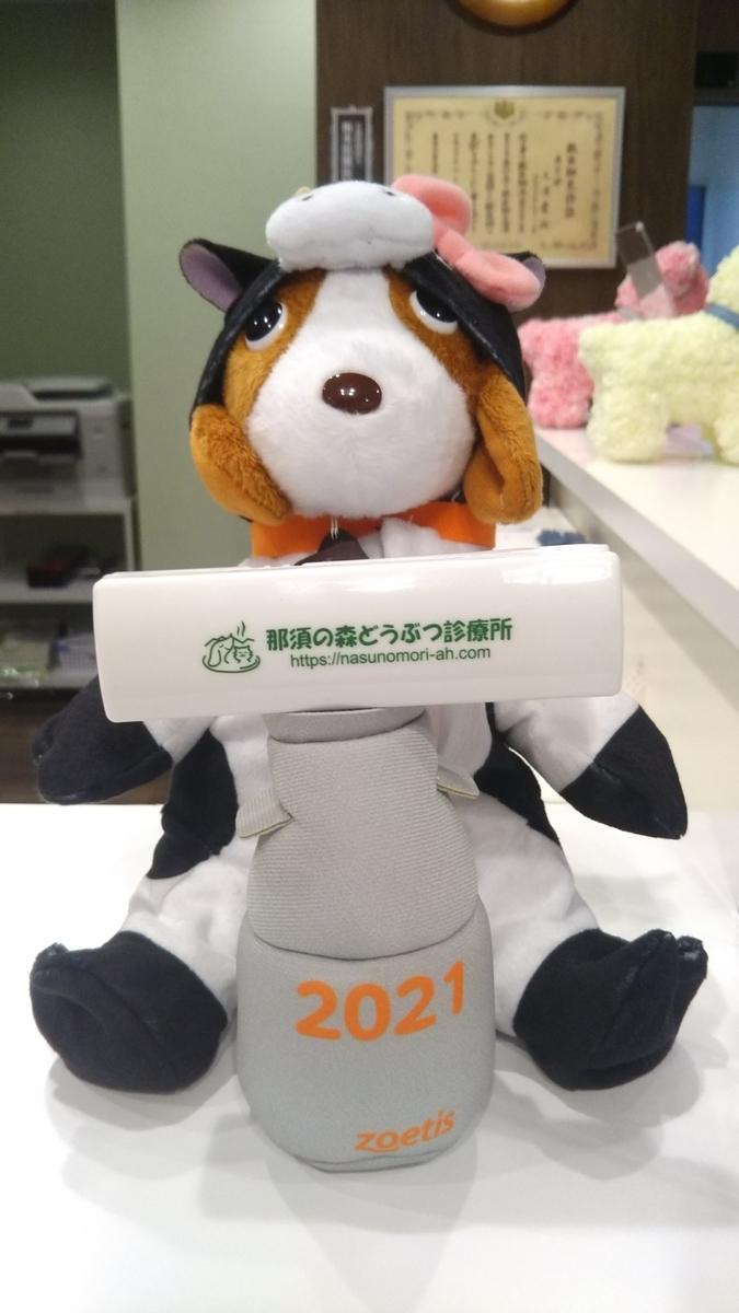 f:id:nasunomori-ah:20210109144206j:plain