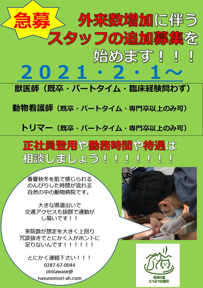 f:id:nasunomori-ah:20210202152353j:plain