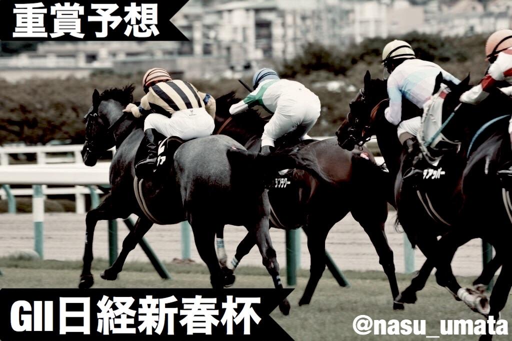 f:id:nasutaouma:20200112172738j:image