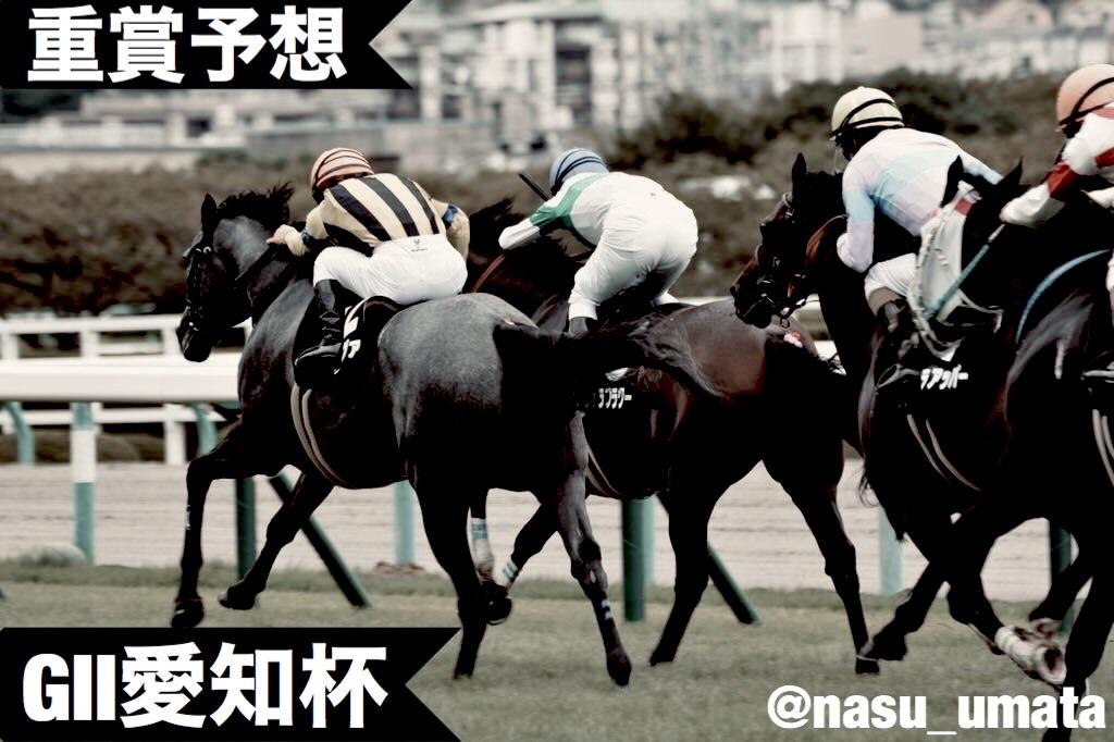 f:id:nasutaouma:20200113174743j:image