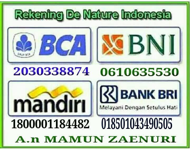 f:id:natakusumah59:20171010134148j:plain