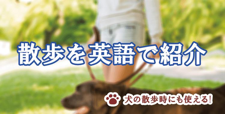 散歩を英語で説明しよう、散歩にまつわる英単語、ネイティブキャンプ