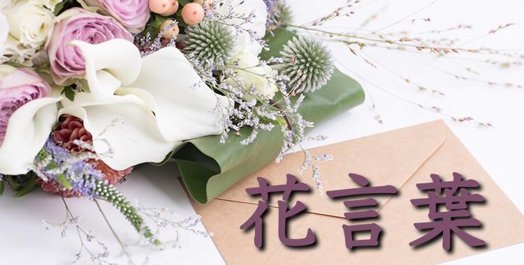 花言葉、バラ、花束