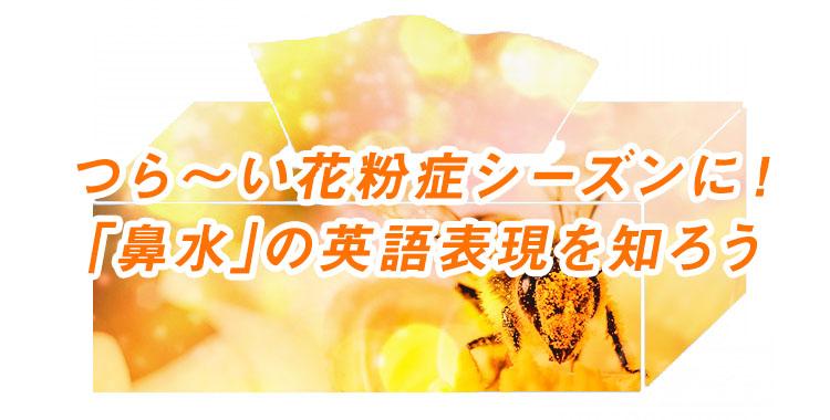 鼻水の様々な英語表現法、花粉症シーズンに役立つ英語フレーズ、ネイティブキャンプ