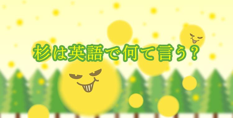 杉は英語でなんと表現する、花粉症時期に役立つ英語フレーズ、ネイティブキャンプ