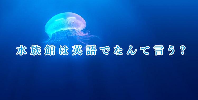水族館は英語で何と言う、水族館にいる生き物を英語で、ネイティブキャンプ