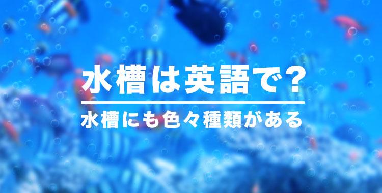 水槽は英語で、水族館の生き物を英語で、ネイティブキャンプ