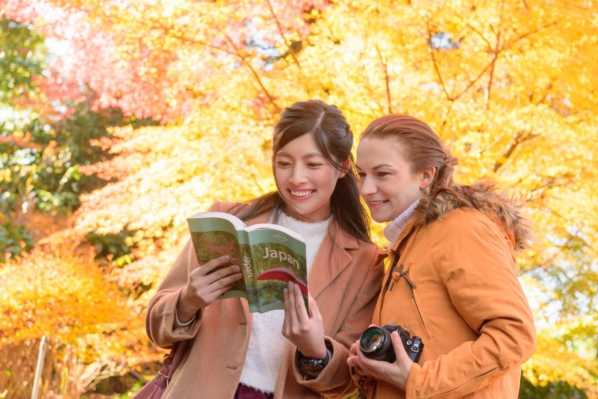 外国人、観光客、旅行、秋